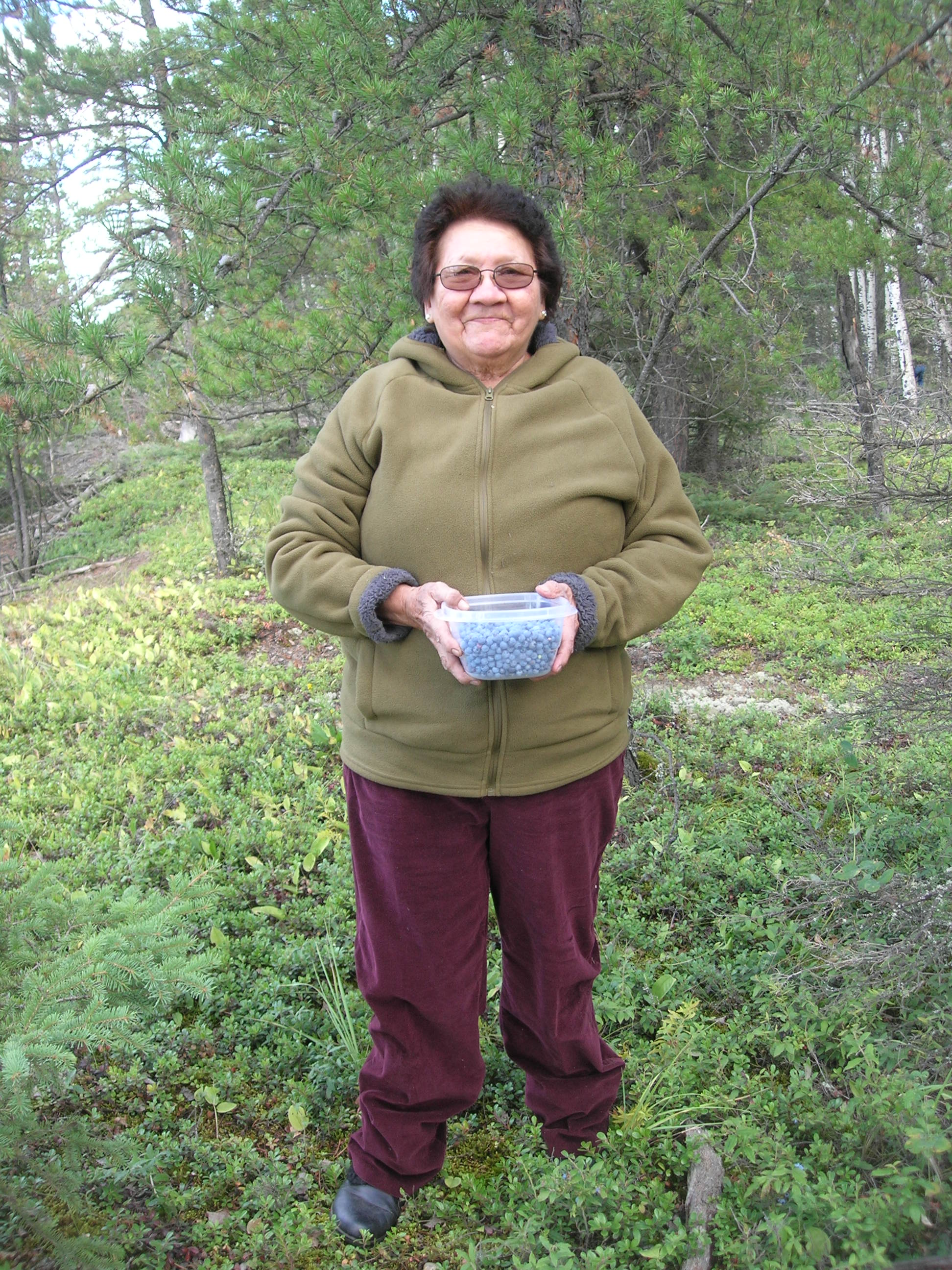 Celina Harpe, a member of the WBEA-Fort McKay Berry Focus Group since 2010, with blueberries harvested for testing at one of the group's monitored berry patches.